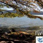 Report della giornata di Manifestazione Fondali Puliti Lago di Endine del 21 maggio 2017
