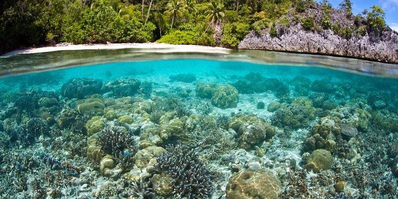 Diving in Papua Nuova Guinea: una destinazione senza tempo