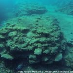 Ischia: la città sommersa di Aenaria riemerge dal mare dopo il sisma