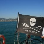 Weekend dedicato all'ambiente, Sea Shepherd a San Terenzo
