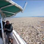 Immagini sconvolgenti! Un mare di plastica invade i Caraibi