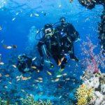 Sott'acqua senza barriere, avventura in Mar Rosso per i ragazzi d