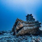 A 80 metri di profondità riemerge la battaglia delle Egadi