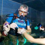 Primo prelievo di sangue durante un'immersione subacquea: i test a Y-40