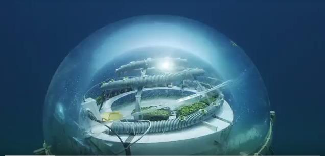 Nemo's Garden, come coltivare ortaggi sott'acqua