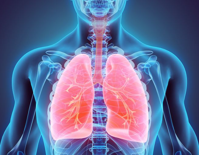 Embolia polmonare, pericolo non solo per subacquei