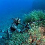 Tenerife e Gran Canaria subacquei in rivolta