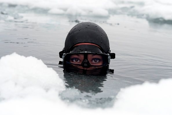 Le parole di Johanna Nordblad, la sirena dei ghiacci