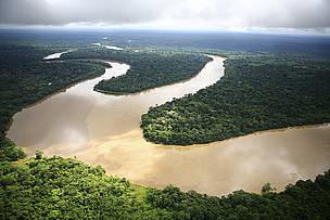 Giornata mondiale dell'acqua e foreste