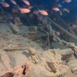 Eccezionale scoperta a Camogli forse un relitto del 1500